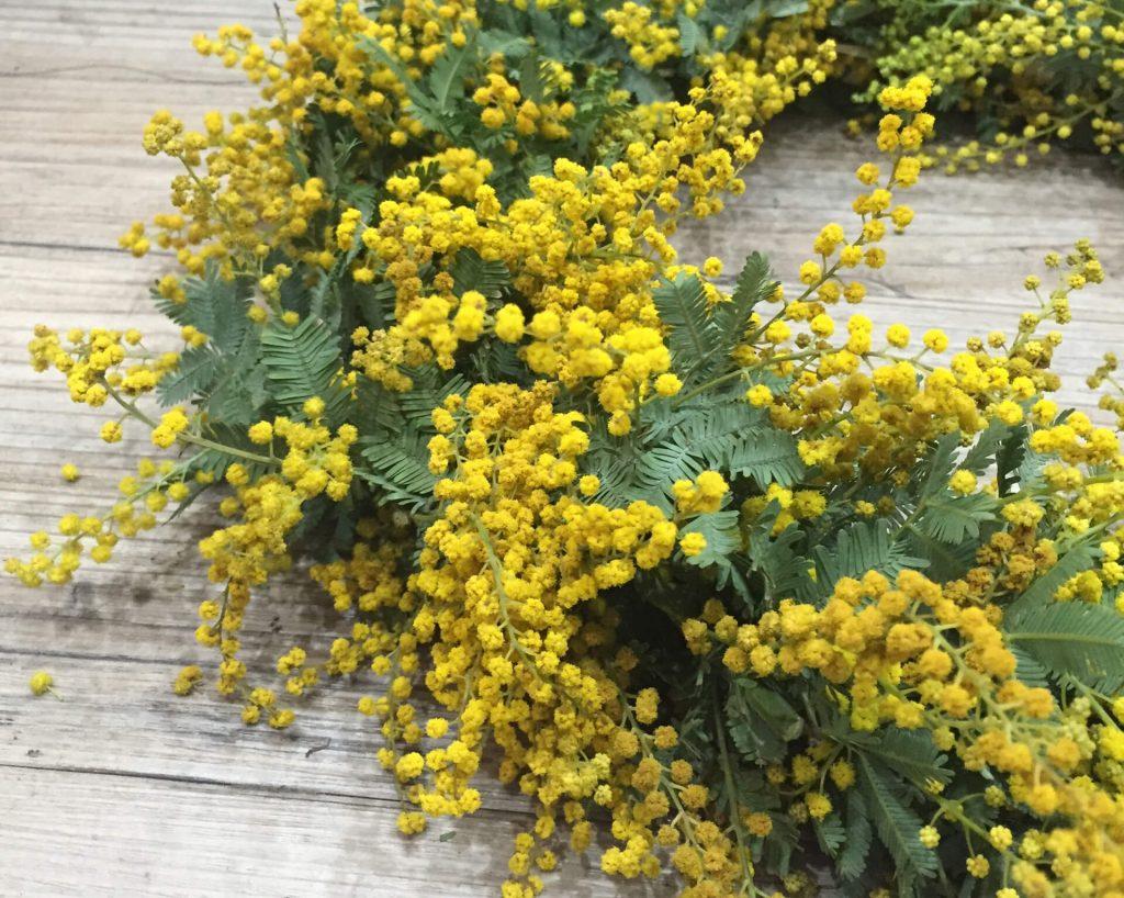 鮮烈な黄色が放つ陽気なパワー。ミモザのリースで心もインテリアもリフレッシュ