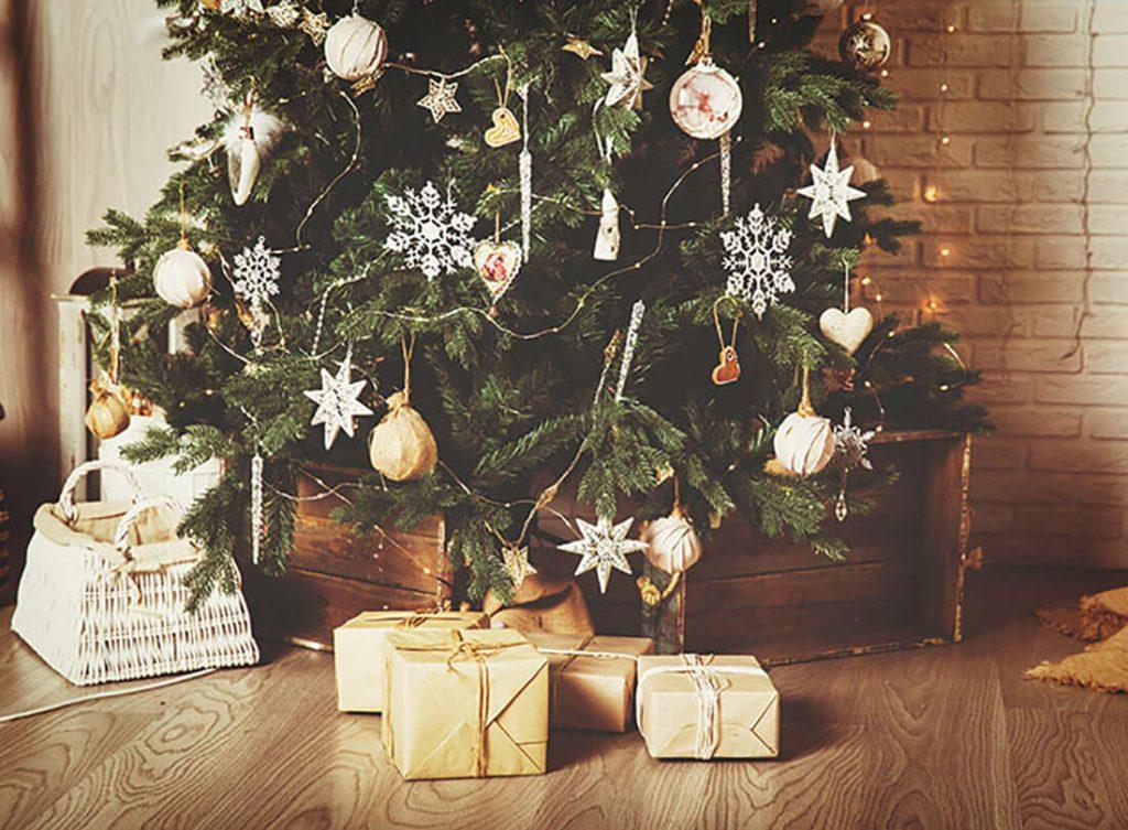 2018年クリスマスは本物のもみの木と過ごしたい!