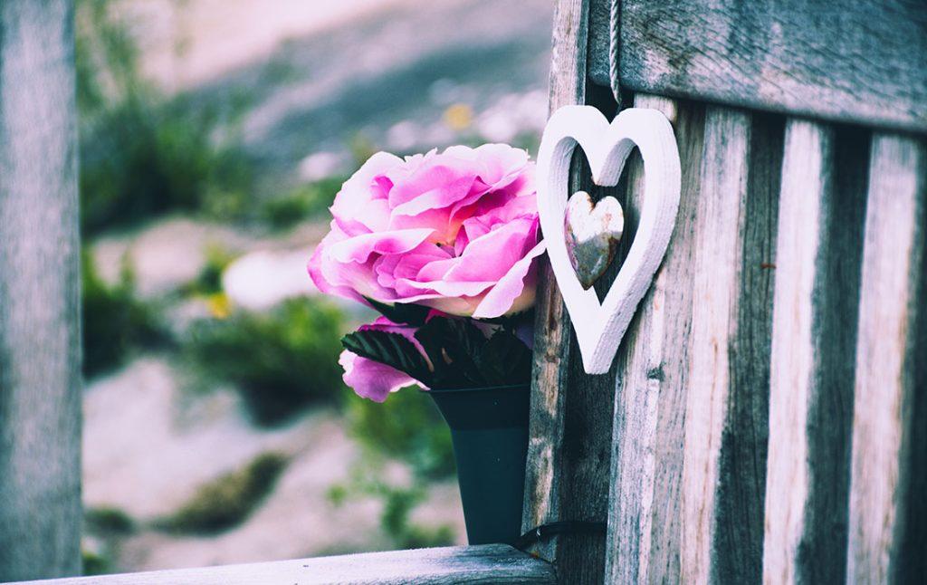 張りつめた空気に咲く、冬越しを彩るおすすめの花