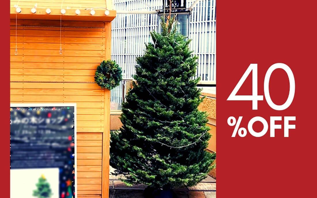 【売り切れ御免】クリスマスツリー、本物のもみの木が40%OFF!!